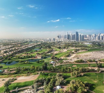 latest news Greening the urban jungle – How the UAE can lead the way